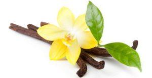 Perfumes con olor a vainilla