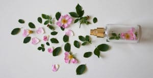 Como Conservar Tu Perfume